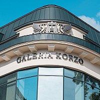 Galeria Korzo